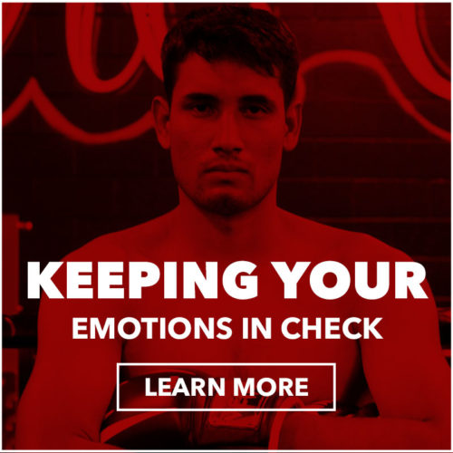 keeping_your_emotions_in_check